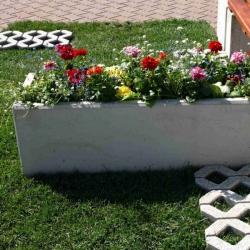 kvetinac-sandra-04